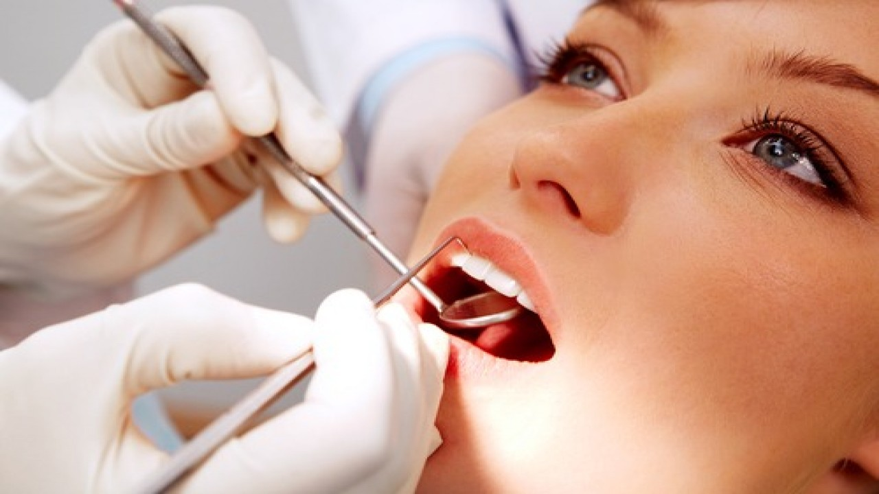 best dentist in norfolk va, dentist norfolk va